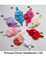 Beautiful Princess Flowers Headbands  (L120)