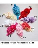 Beautiful Princess Flowers Headbands (L125)