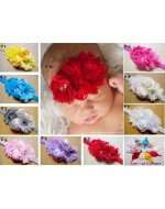 Beautiful Princess Flowers Headbands (L127)